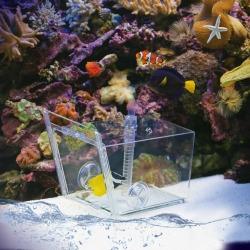 Fish trap Trampa para peces