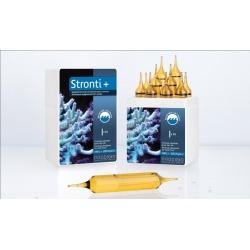 STRONTI+ PRO (10 ampollas)