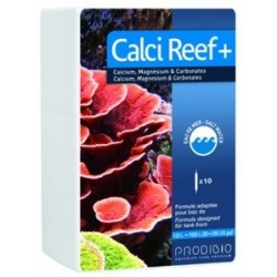 CALCI REEF+