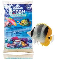 OCEAN DIRECT OOLITE, 9,07 kg