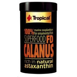 FD Calanus