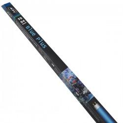 T5, BLUE PLUS