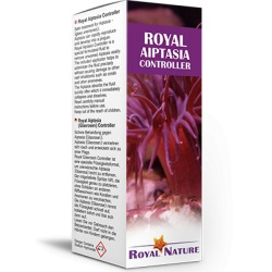 Royal Nature Aiptasia