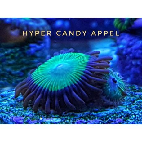 Hyper Candy Appel