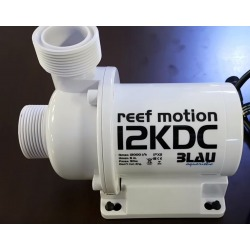 Reef Motion 12KDC