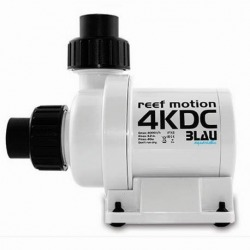 Reef Motion 4KDC