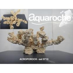 Acroporock AR-9710